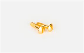 Винты для распределительной коробки/TV  розетки 2 шт. (золото) Ретро WL18-22-01