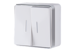 Выключатель двухклавишный с подсветкой Gallant (белый) WL15-03-03