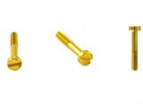 Винт для распределительных коробок  и ТВ розеток цвет Золото BIRONI